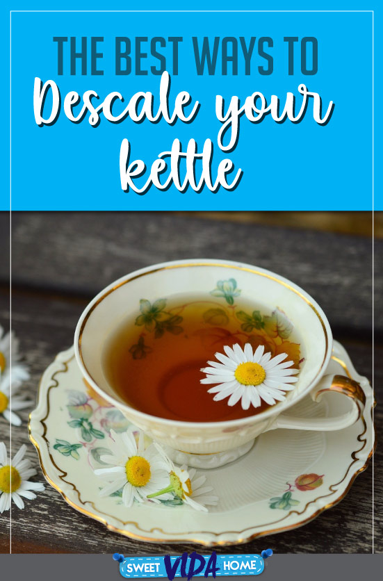 descale your kettle pin